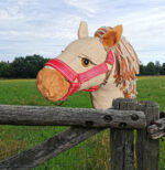 "Haflinger ""Honey"""